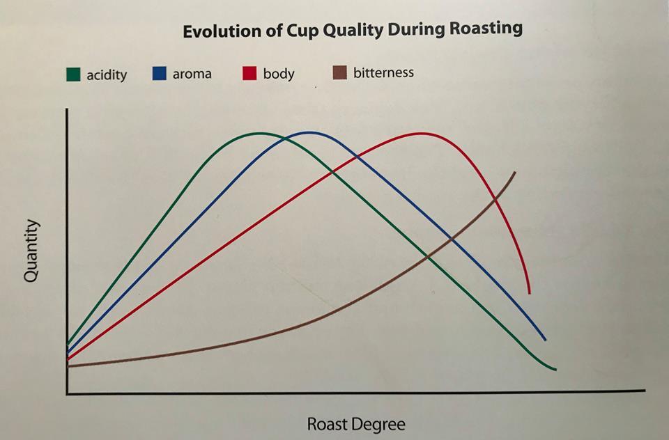 Ako stupen prazenia vplyva na chute kavy