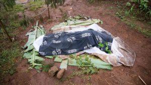 Zabíjanie v Cameroone zasahuje aj pestovateľov kávy, s ktorými spolupracujem aj ja